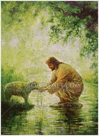 gentle-shepherd-2-1-1-1-1-GoodSalt-yskas0004