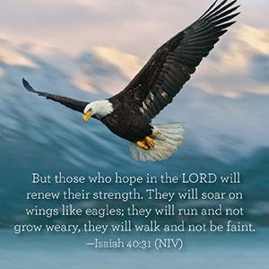 Isaiah-40-31-